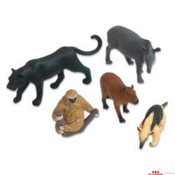 Dél-Amerikai állatok készlet